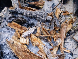 Bark scattered in fire pit
